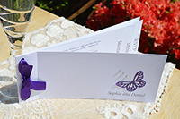 Butterfly Damask day invite