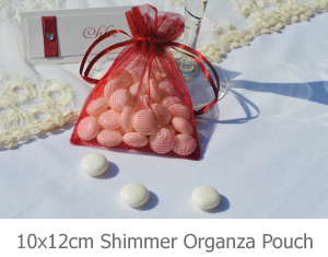 10x12 Shimmer Organza pouch favour image.