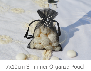 7x10,shimmer organza pouch image.